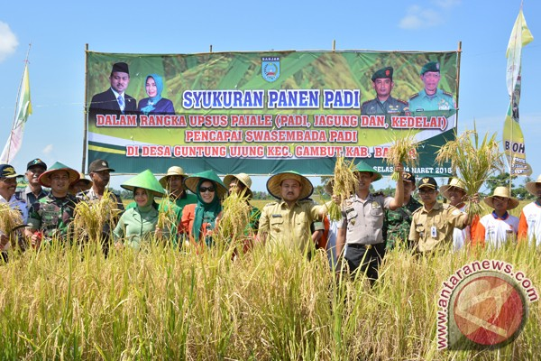 Banjar Open 1000 Hectares New Rice Fields