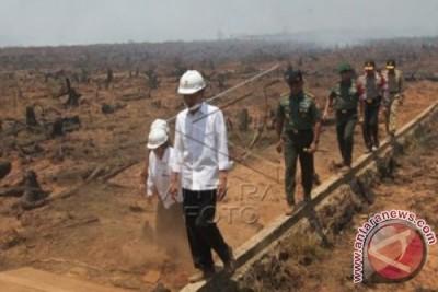 Presiden : Pencegahan Kebakaran Hutan Harus Berkelanjutan