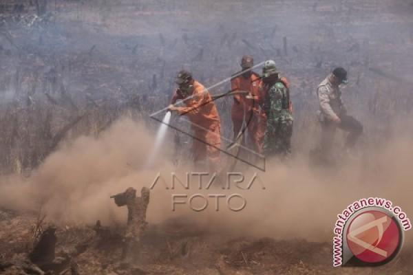 Ratusan Hektare Lahan Di Tanah Laut Terbakar