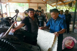 Government Promises Domestic Rubber Absorption