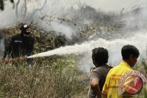 Prioritaskan Pencegahan Kebakaran Hutan