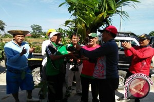 FKH Prepared Thousand Trees for Greening Action