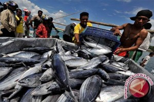 Nelayan Bagan Panen Raya