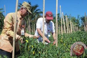 Pemkab  HST Fokus Tiga Sektor Pembangunan
