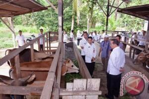 HSS Kembangkan Potensi Unggulan Desa