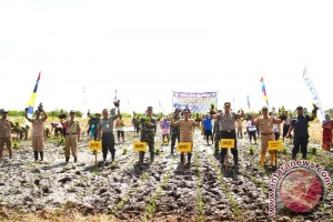 TNI Help Optimizing Agricultural Land