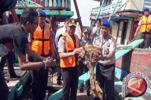 DPRD  Imbau Nelayan Patuhi Aturan