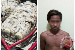 Polisi Tangkap Pencuri Getah Karet Milik PTPN