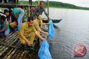 Balai Benih Ikan Tabalong Terkendala
