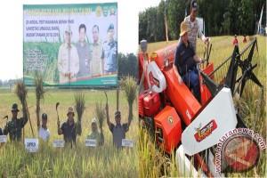 Pengembangan Pertanian Menjadi Sektor Unggulan