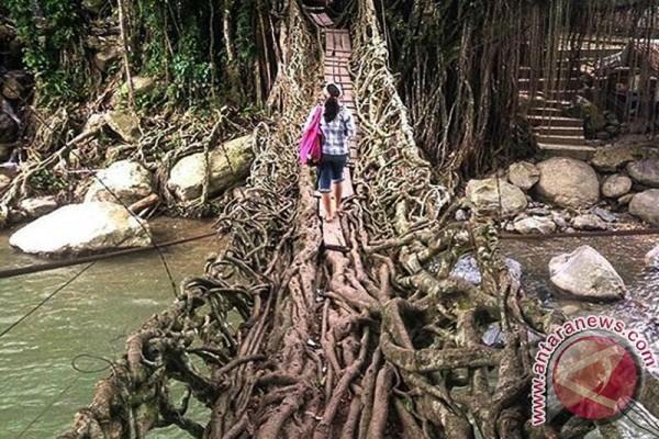 Jembatan Akar Segera Diperbaiki Pascabanjir