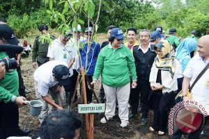 Kalsel Segera Tanami 200 Hektare Lahan Kritis