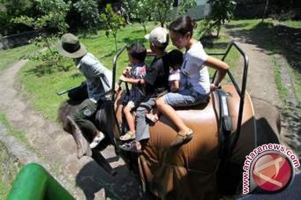 GL Zoo Mulai Berbenah Hadapi Libur Ramadhan