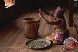 Merajut Budaya Leluhur Pesona Dayak Meratus