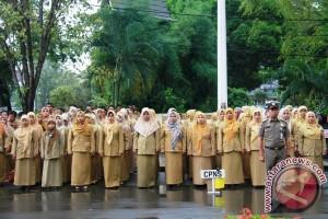 226 Honorer Tabalong Jadi PNS