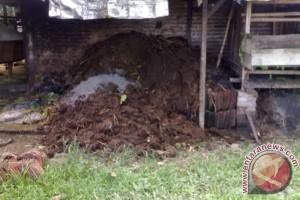 Pemkab Barito Kuala Kembangkan Biogas Kotoran Sapi
