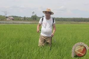 Kontribusi Pertanian Diharapkan Meningkat