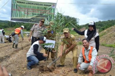 Tapin Pilih Bambu Untuk Optimalisasi Ekstambang