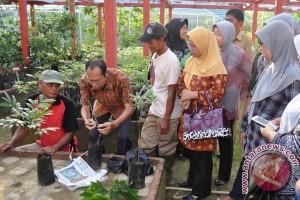 Karang Indah Wakili Lomba Desa Tingkat Provinsi