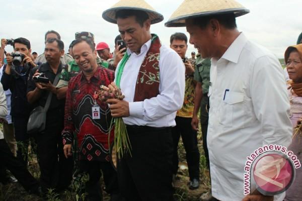 Tapin Yakin Cetak Lahan Pertanian Lampaui Target Nasioal