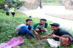 Barangai greening Binuang River banks