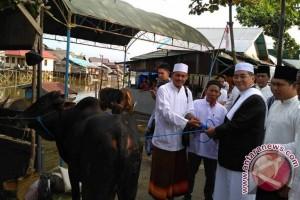 Bupati HSS Bantu Hewan Kurban dan Dana Untuk Mesjid Ibrahim