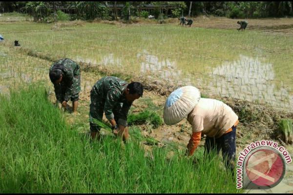 TNI friend of farmers