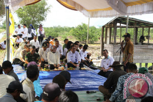 Pemprov Bantu Benih Padi Seluas 105.000 Hektare