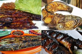 Totok Tewel Suka Makan Ikan Gabus
