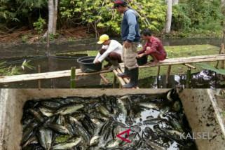 ULM  Dukung Pengembangan Perikanan Tangkap di HSS