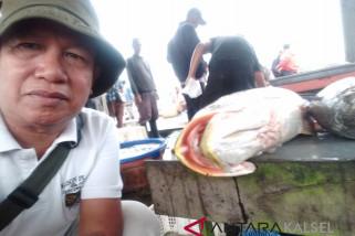 Pemkab Kembangkan Budi Daya Ikan Sistem Pagar