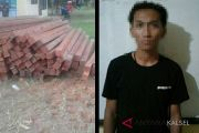 Polisi Tangkap tersangka Pembawa Kayu Ilegal
