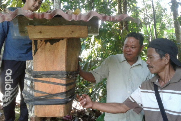 Jaro forest farmers learn kelulut bee cultivation