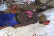 Pemulung ditemukan tewas gantung diri