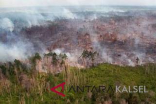Kebakaran hutan kalsel capai  2.005 hektare