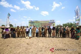 Tapin dapat perluasan lahan pertanian 18,500 hektare