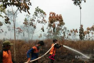 Bupati imbau relawan Karhutla mengutamakan keselamatan
