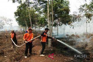 Seluas 30 hektare lahan perkebunan di Balangan terbakar