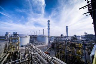 Harga minyak naik tipis meskipun Arab Saudi janji tingkatkan produksi
