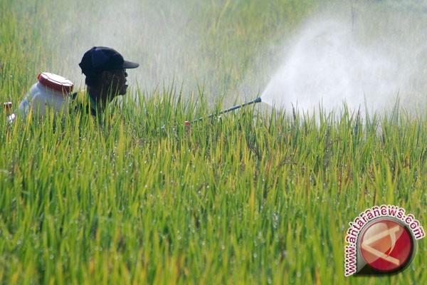 Memilih Mandiri dengan Bertani