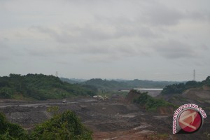 4,5 Juta Hektare Tambang Ancam Ketahanan Pangan