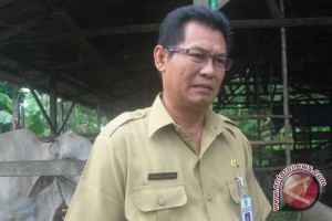 Kaltim Dorong Reorganisasi Peternak Unggas Lokal