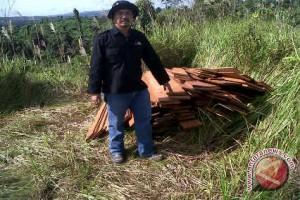 Petugas Temukan Pencurian Kayu Ulin di TNK