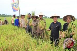Wagub: Petani Harus Kompak dan Bersemangat
