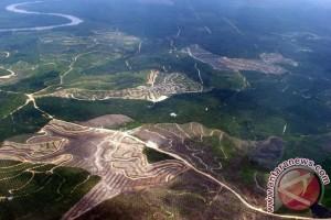 Selamatkan Hutan, Selamatkan Kekayaan Negara