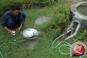 Distanak Penajam Kembangkan Biogas dari Kotoran Sapi