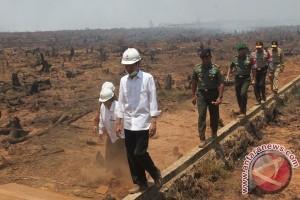 Presiden: Jangan Lengah Cegah Kebakaran Hutan