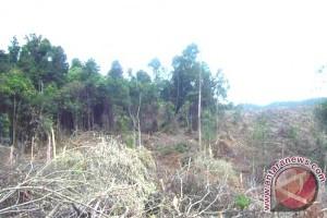 Pelestarian Lingkungan Tanggung Jawab Bersama