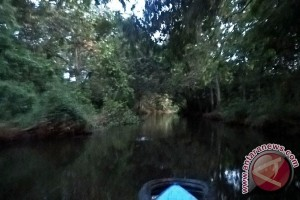 Pemerintah Diminta Selamatkan Sungai Karang Mumus