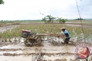 Kaltim Peroleh Rp165 Miliar Untuk Pembangunan Pertanian